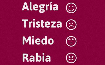 Las cuatro emociones básicas, ¿que nos indican?